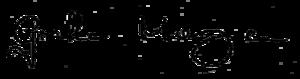 Cllr Graham Morgan signature